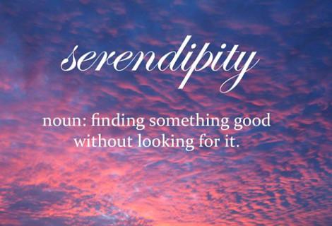 SEIZE SERENDIPITY
