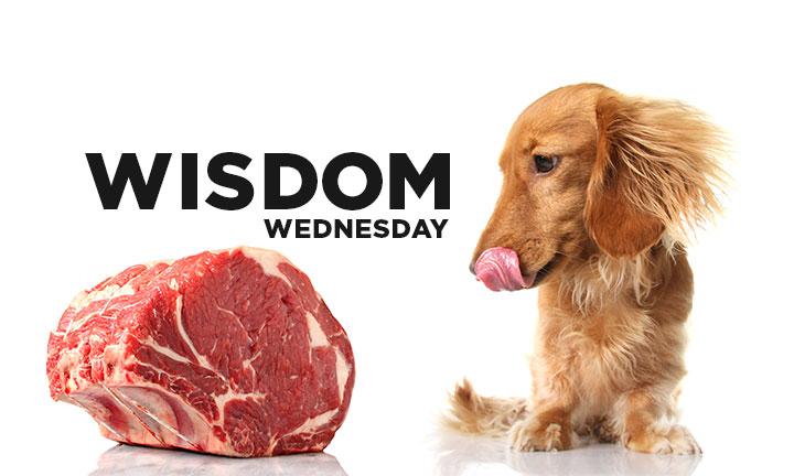 WISDOM WEDNESDAY – THE WISDOM DISCIPLINE LINK